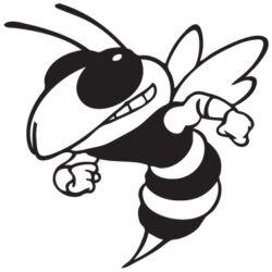 Méhecske autó matrica