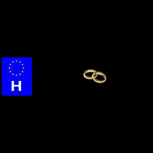 Esküvős rendszám tábla választható nevekkel